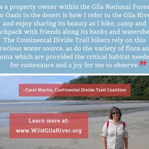 Voices of the Gila Carol Martin