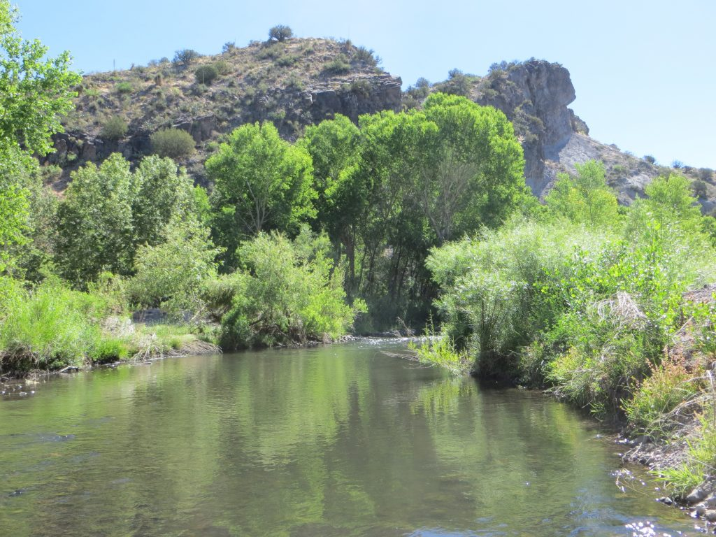 River Segments