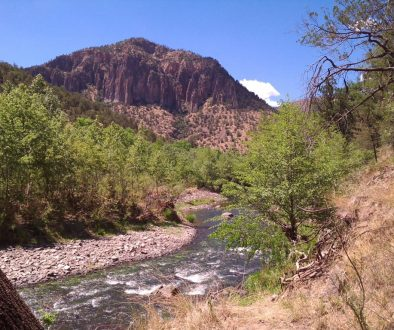 Gila River in the Gila Wilderness