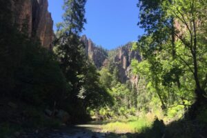 Middle Fork of the Gila River