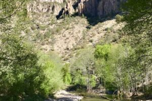 West Fork of the Gila River