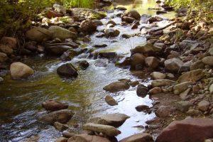 Las Animas Creek