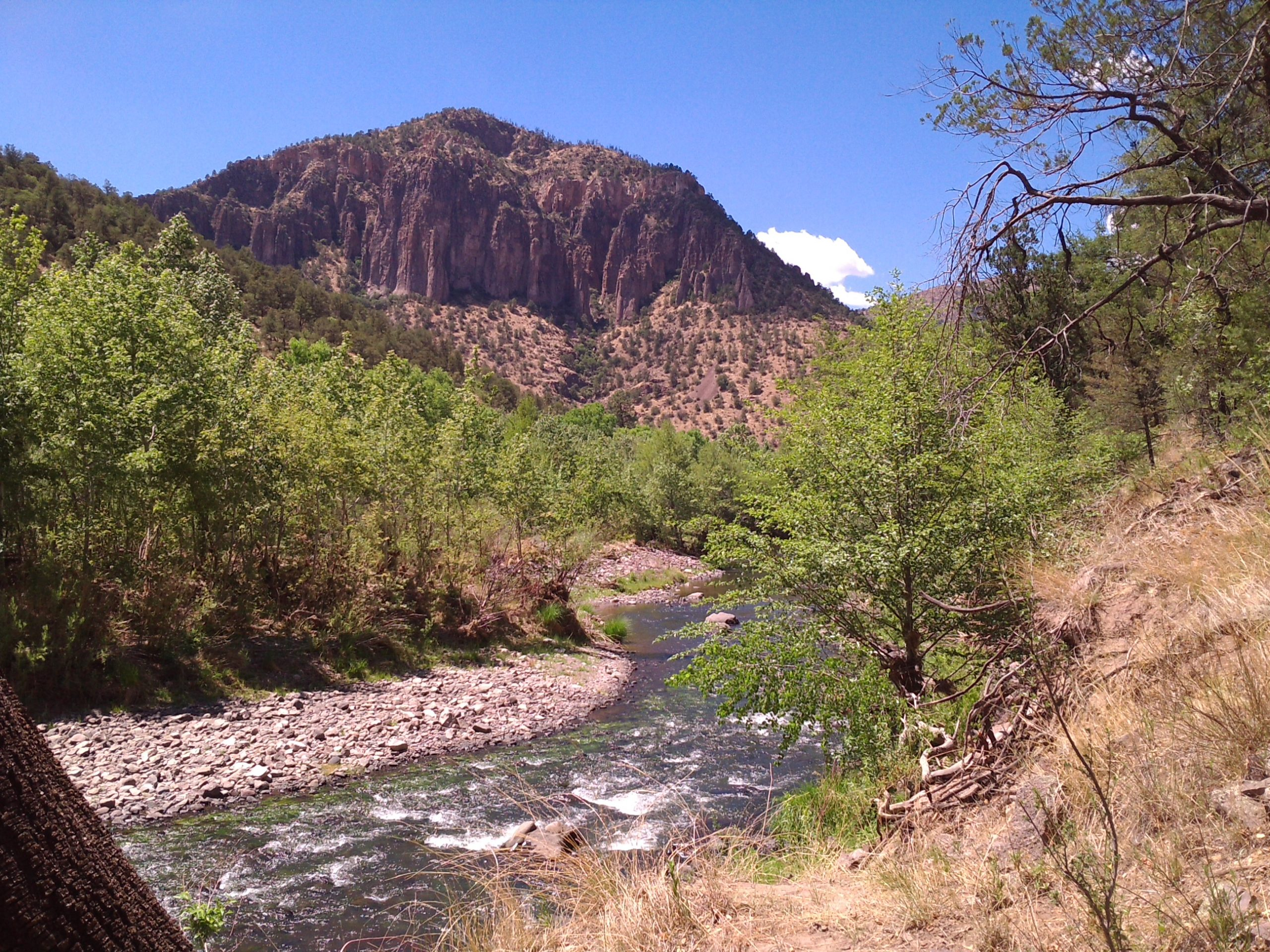 New Mexico senators unveil legislation to designate Gila River as 'wild and scenic'