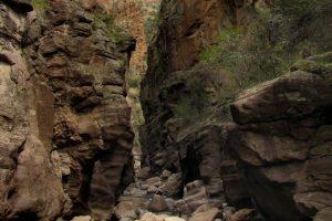Sapillo Creek