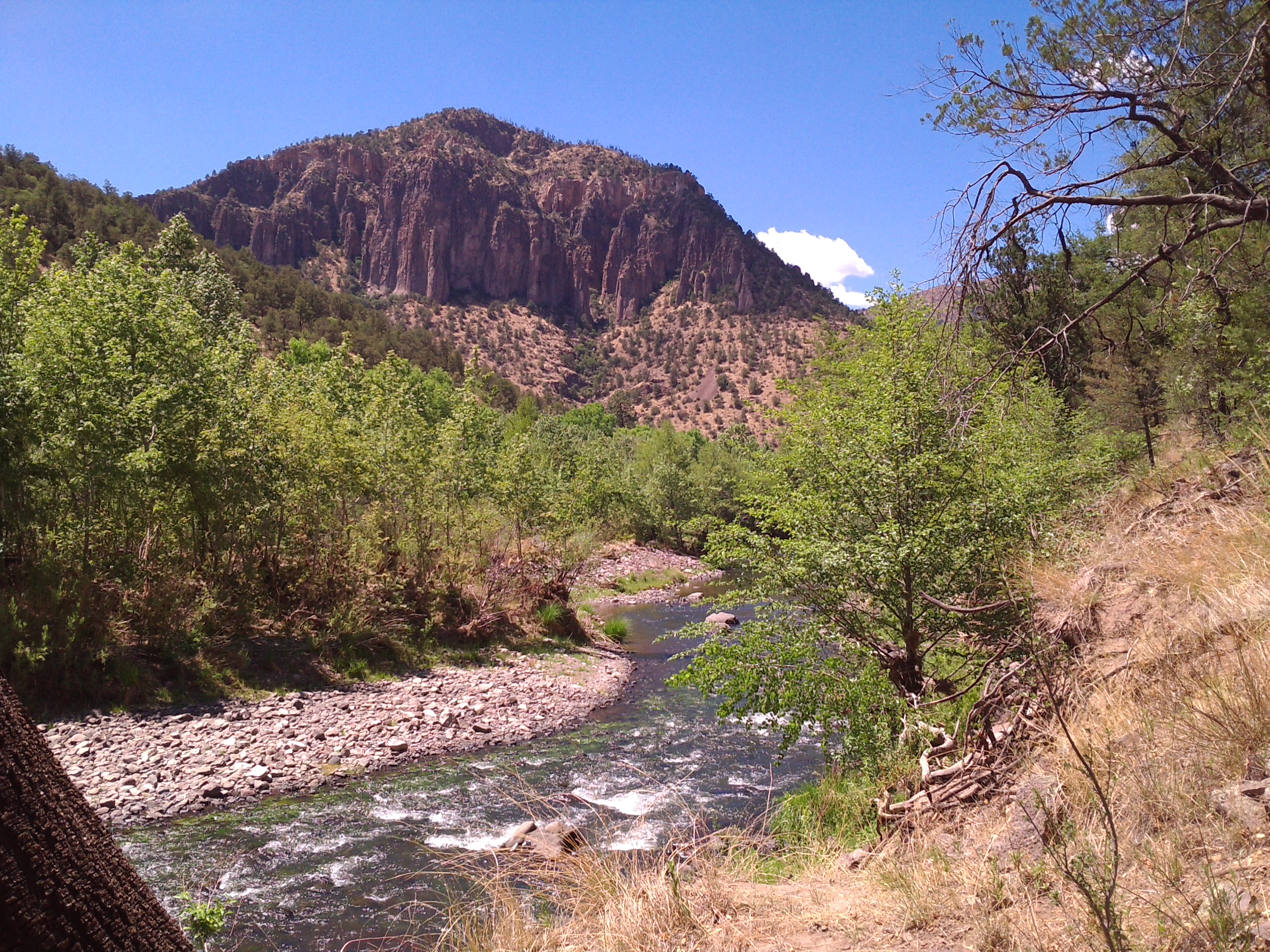 Let's push for Wild and Scenic Gila