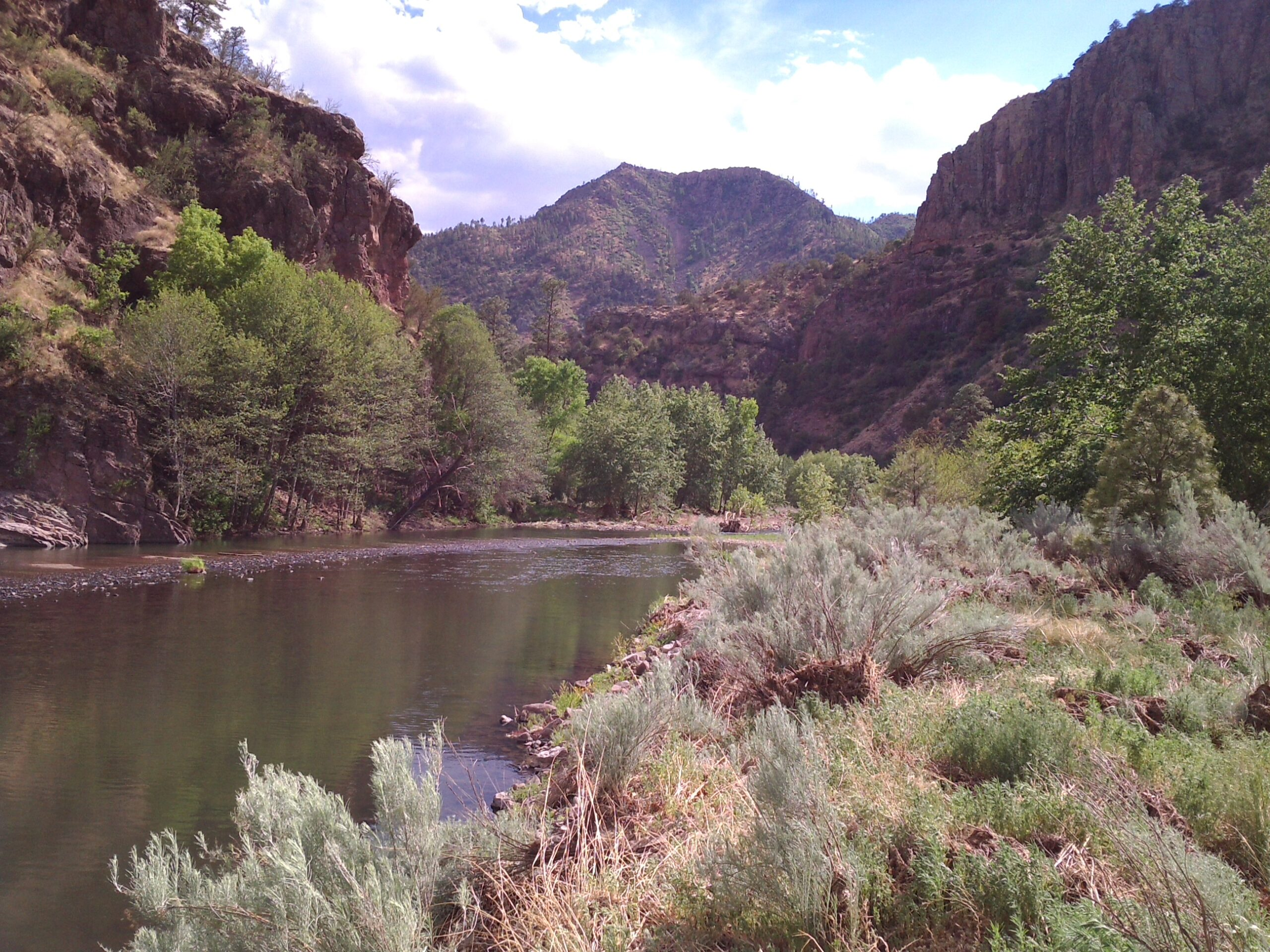 Why I support a Wild and Scenic Gila River