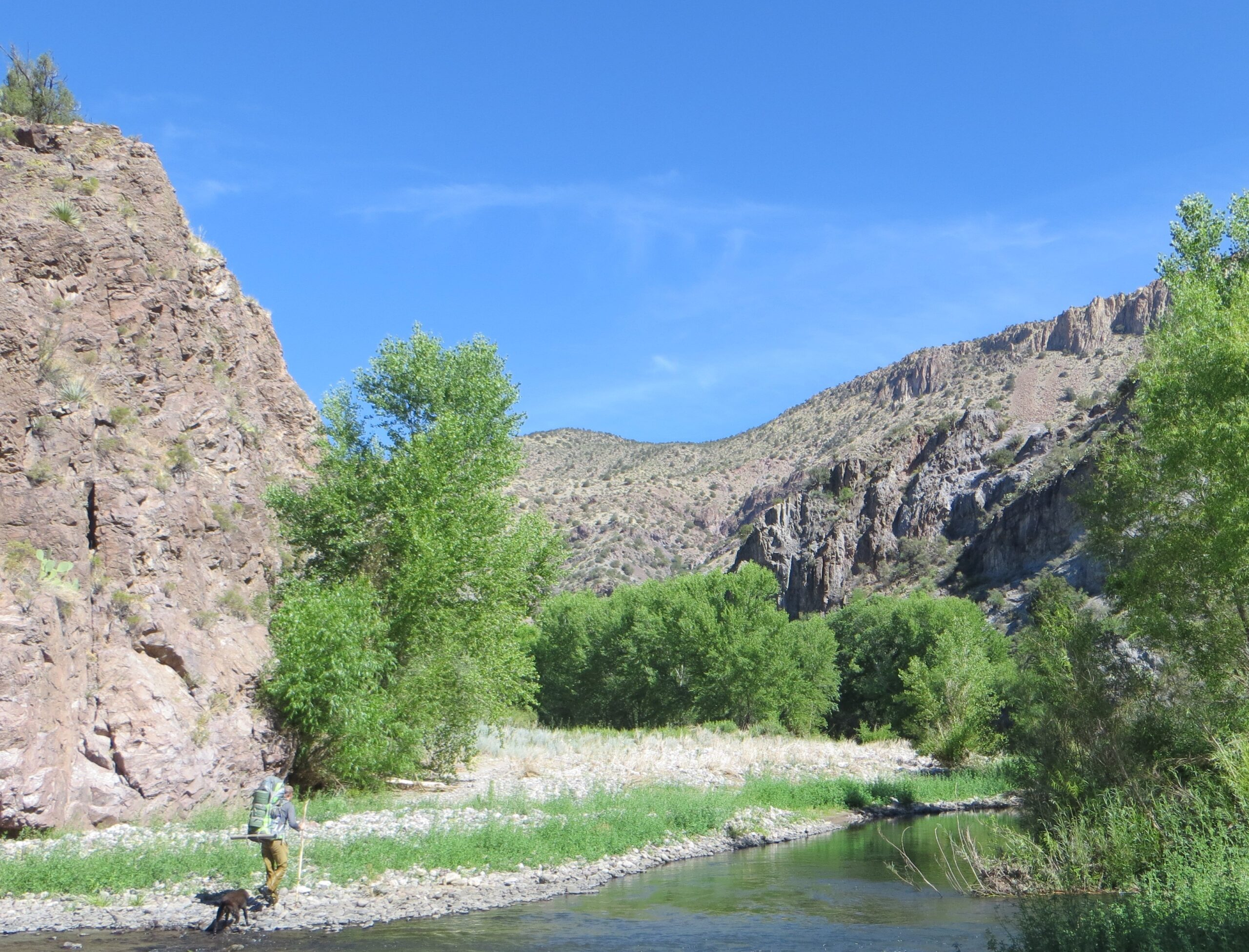 Study finds wild Gila and San Francisco rivers greatly contribute to local economy